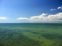 Sea shoal Stock Images