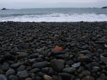 Sea Shore. Rocky beach, south pacific ocean Stock Photography