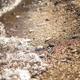Sea shore Stock Images