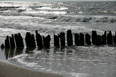 The silhouettes of old breakwater on the sea shore Royalty Free Stock Image