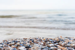 Sea shore background Royalty Free Stock Photography