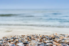 Sea shore background Royalty Free Stock Images