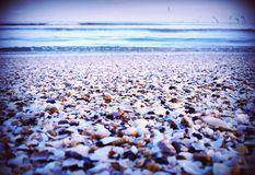 Sea shore Royalty Free Stock Image