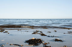 Sea Shore. Brown sand and flat water Stock Photography
