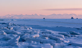Sea shore covered with ice. Sunset on the Sea of Okhotsk, Magadan, winter landscape Royalty Free Stock Photos