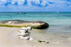 Sea shore erosion control bags Stock Images