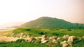 Sea shore green landscape. Landscape near beach greenery with rocks Stock Photo