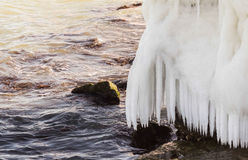 Sea shore in ice. With big icicles Royalty Free Stock Image