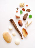 Sea shore items collection royalty free stock photo