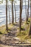 Sea shore path Royalty Free Stock Photos