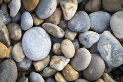Sea shore pebbles Stock Photography