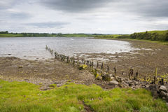 Sea shore with poles Royalty Free Stock Photography