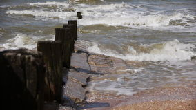 Sea shore with a row of piles. Sea shore with a row of wooden piles stock video footage