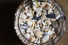 Sea shore shells, corals, stones in a glass bottle and wine glass stock photos