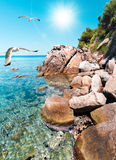 Sea shore in Sitnonia, Northern Greece Royalty Free Stock Photo