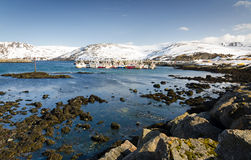 Sea shore in Skarsvag Stock Photography