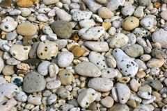 Sea shore stones Royalty Free Stock Photography