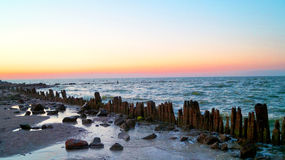 Sea. Shore at sunset rocks stock images
