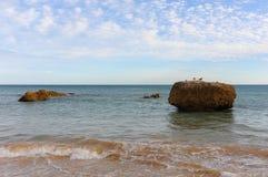 Tres Castelos beach in Portimao, Algarve & x28;Portugal& x29; stock images