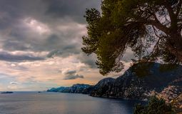 Sea shore vista behind a lonely tree under blue skies with fluff. Y white clouds, Amalfi, Italy Stock Photos