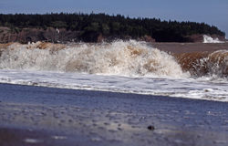 Sea shore water wave Royalty Free Stock Photo
