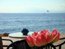 Sea side cafe table. Close up of sunny cafe table top flower arrangement by Mediterranean sea with para-glider in distant background Royalty Free Stock Image