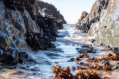 Sea side passage royalty free stock images