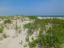 Sea side. This photo was taken at Ocrakoke Island, NC Stock Image