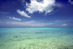Sea and sky. Seascape off the coast of St. John, US Virgin Island Stock Images