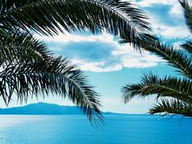Sea, sky and palms Stock Images