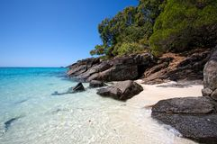 Beach on Whitsunday Island Royalty Free Stock Images