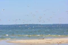 Sea, Sky, Shore, Ocean stock images