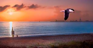 Sea, Sky, Sunrise, Horizon Stock Image