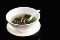 Sea slug soup Royalty Free Stock Image
