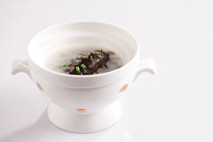 Sea slug soup. Chinese food:stew sea slug with chicken and some medicinal materials, at last got this soup.Horizontal composition and white backgroud royalty free stock images