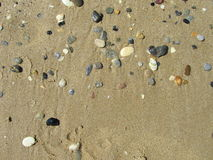 Sea small stones from above. Sea small stones on wet golden sand from above Stock Images