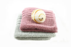 Sea snail on towel spa concept Stock Image