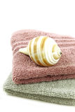 Sea snail on towels Stock Photography