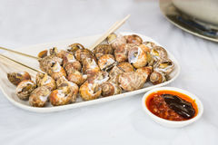 Sea snails is delicacy among Chinese in Hong Kong Royalty Free Stock Photography