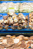 Sea snails and scallops at fish market Stock Images