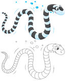 Sea snake Stock Photography