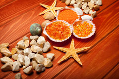 Sea Spa - bath salt and sea-shell Stock Image
