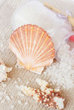 Sea spa setting with  scallops shell Royalty Free Stock Image
