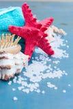 Sea spa setting with starfish Royalty Free Stock Image