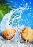 Sea splash Royalty Free Stock Photo