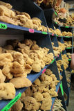 Sea sponge in the store Stock Photo
