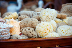 Sea sponges for sale at a market Royalty Free Stock Photography