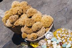 Sea sponges Stock Photography