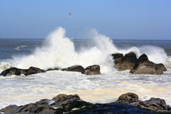Sea spray Royalty Free Stock Image