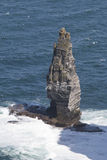 Sea stack home to hundreds of seabirds at Cliffs of Moher, Count Royalty Free Stock Photos